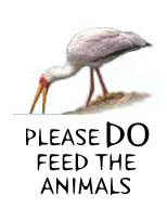 Please DO Feed the Animals