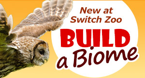 New at Switch Zoo - Build a Biome